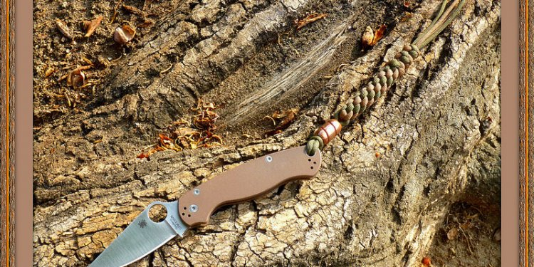Brown Para 2 S35VN ~ Spyderco Limited Edition