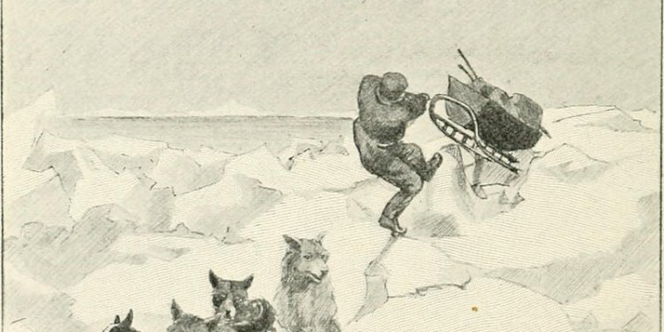 Image from page 187 of With Nansen in the north; a record of the Fram expedition in 1893-96 (1899