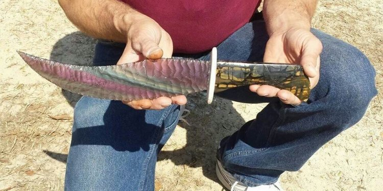 Image result for 14 inch blade