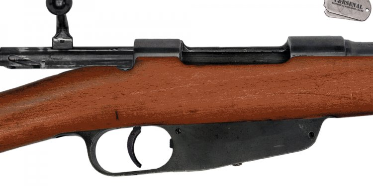 Reconsidering the Carcano